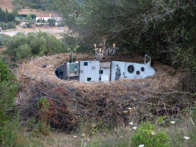 nest building, 2010