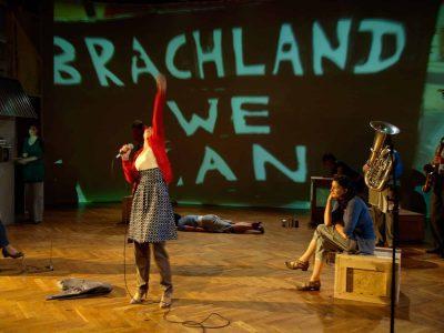 Brachland, 2010